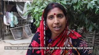 Voice of Lipika Das - Woman Entrepreneur under Krishi Utsho's EWYSEA project