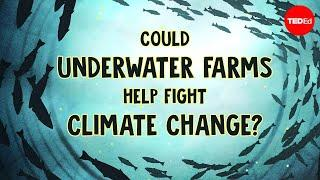 Underwater farms vs. climate change - Ayana Elizabeth Johnson and Megan Davis
